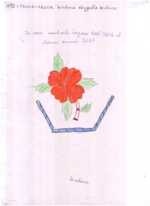 092. TAHIRIMANOA Diadema Abygaella Andrice