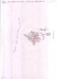 170. RAZAFINDRAZAY Heritiana Alexandrine